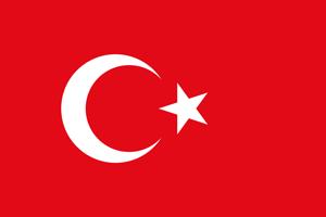 Международная доставка из Турции